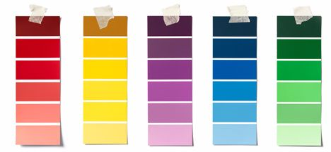 Choose Paint Color